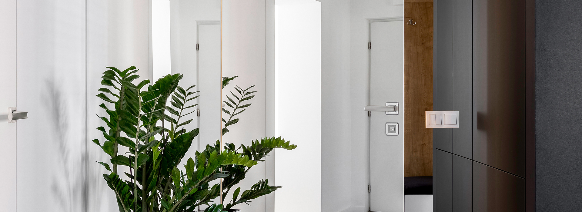 Concealed pocket door with mirror
